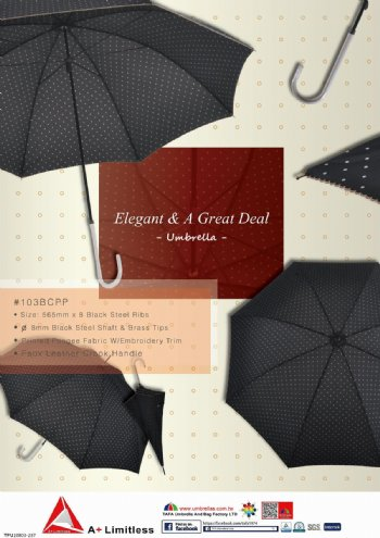 Elegant & A Great Deal Umbrella